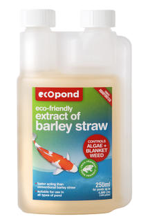 Extract of Barley Straw