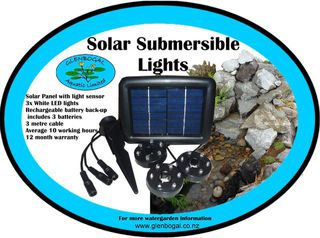 Solar Submersible LED lights with back-up battery