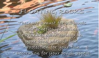 Floating Rocks