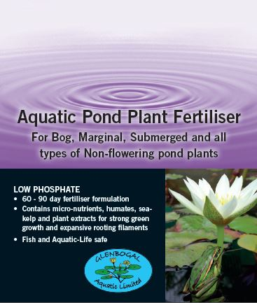 NON FLOWERING Aquatic Plant Fertiliser Tablets (60 - 90 days)